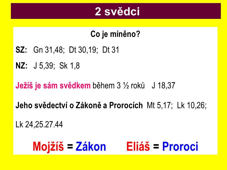 Co je míněno? SZ: Gn 31,48; Dt 30,19; Dt 31 NZ: J 5,39; Sk 1,8 Ježíš je sám svědkem během 3 ½ rokůJ 18,37 Jeho svědectví o Zákoně a Prorocích Mt 5,17;