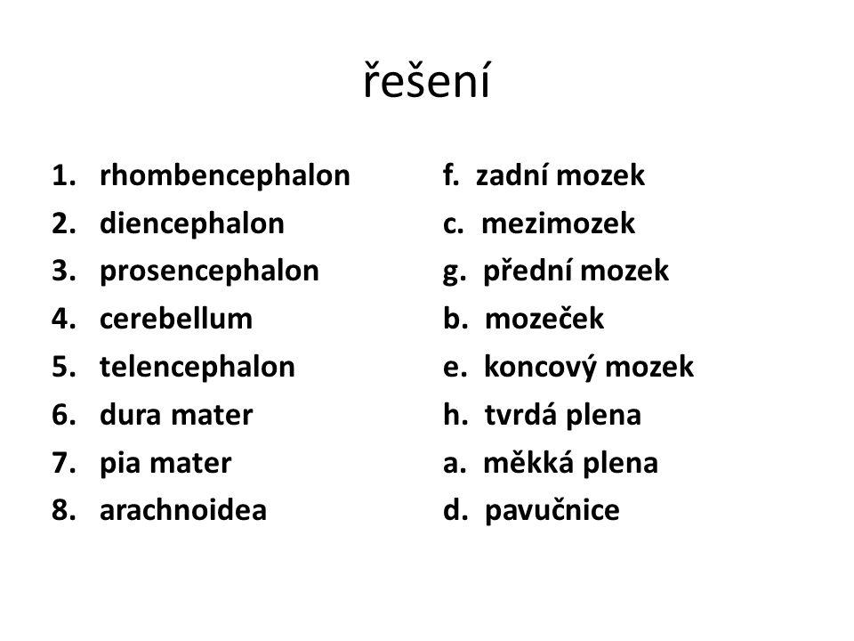 řešení 1.rhombencephalon 2.diencephalon 3.prosencephalon 4.cerebellum 5.telencephalon 6.dura mater 7.pia mater 8.arachnoidea f. zadní mozek c. mezimoz