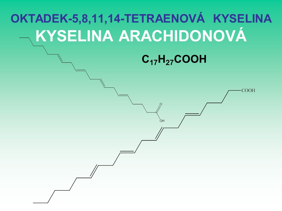 OKTADEK-5,8,11,14-TETRAENOVÁ KYSELINA KYSELINA ARACHIDONOVÁ C 17 H 27 COOH