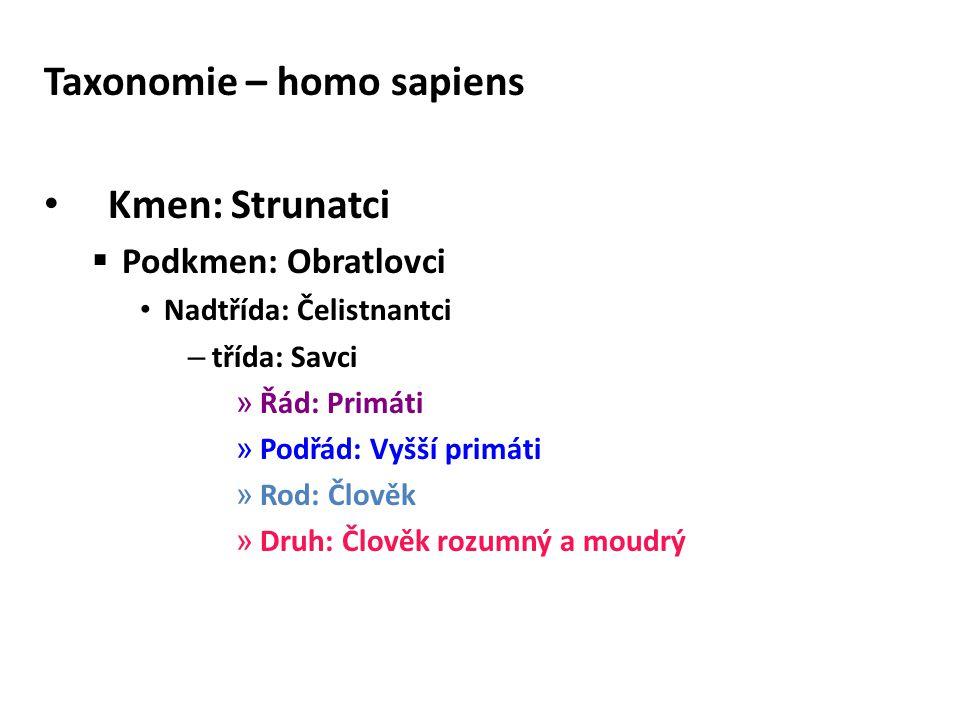 Taxonomie – homo sapiens Kmen: Strunatci  Podkmen: Obratlovci Nadtřída: Čelistnantci – třída: Savci » Řád: Primáti » Podřád: Vyšší primáti » Rod: Člo