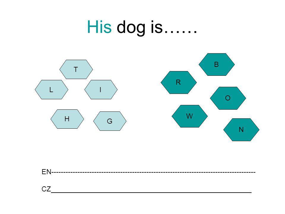 His dog is…… H L G I W O R B EN-------------------------------------------------------------------------------------- CZ______________________________