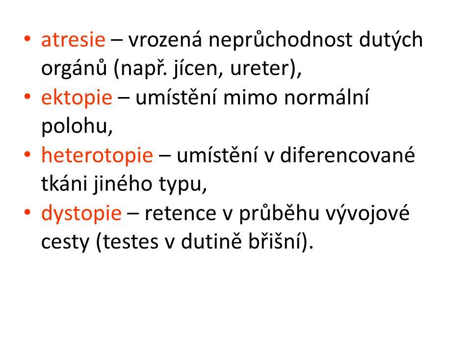 atresie – vrozená neprůchodnost dutých orgánů (např.