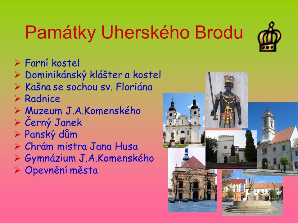 Památky Uherského Brodu  Farní kostel  Dominikánský klášter a kostel  Kašna se sochou sv.