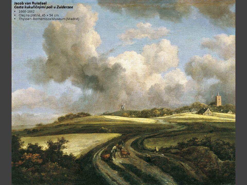 Jacob van Ruisdael Cesta kukuřičnými poli u Zuiderzee 1660-1662 Olej na plátně, 45 × 54 cm Thyssen-Bornemisza Museum (Madrid)
