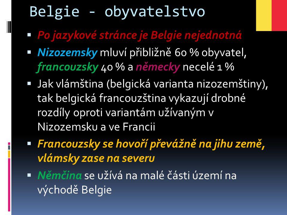 Belgie - obyvatelstvo  Po jazykové stránce je Belgie nejednotná  Nizozemsky mluví přibližně 60 % obyvatel, francouzsky 40 % a německy necelé 1 %  J
