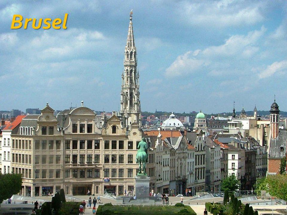 Belgie - hospodářství  Důležitý je chov prasat, skotu, drůbeže a ovcí, význam má i rybolov  Pěstuje se pšenice, ječmen, brambory, cukrová řepa, chmel a jablka  Typické jsou menší farmy s vysokými hektarovými výnosy  Dopravně nejvýznamnější jsou přístavy Antverpy a Oostende se spojením do Velké Británie a ropný terminál Zeebrügge