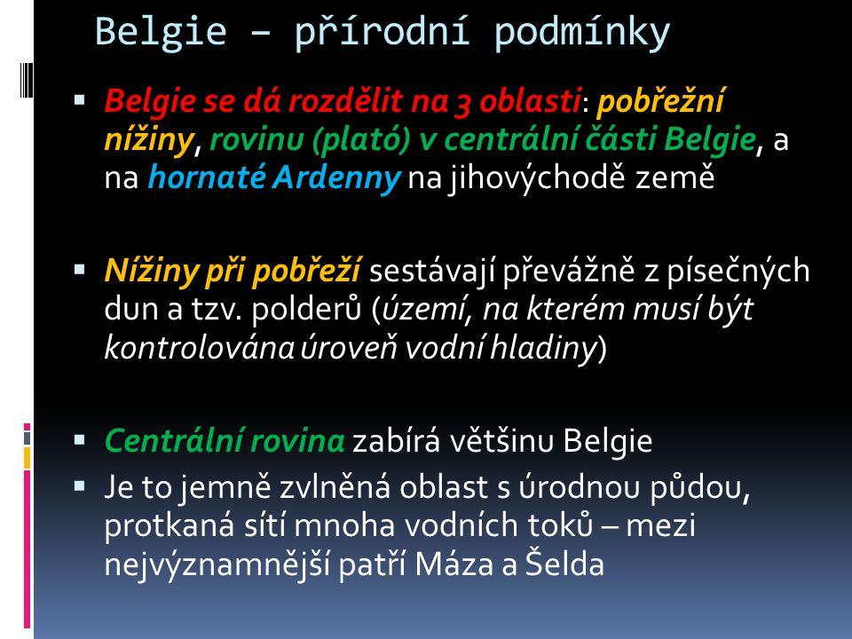 """Belgie - historie  Federalizace Belgie proběhla v období od roku 1970 do roku 2001  Prvním signálem byl v roce 1968 rozpad univerzity v Lovani na vlámskou a francouzskou univerzitu  Roku 1970 byl do ústavy zanesen princip tří """"kulturních společenství (vlámské, frankofonní a germanofonní) a tři územní """"regiony  V roce 1993 se do ústavy dostala formulace, že """"Belgie je federální stát, který se skládá ze společenství a regionů , čímž společenství a regiony získaly další kompetence"""