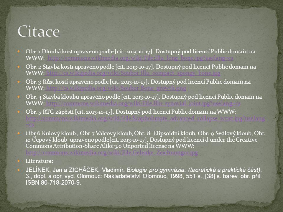Obr.1 Dlouhá kost upraveno podle [cit. 2013-10-17].