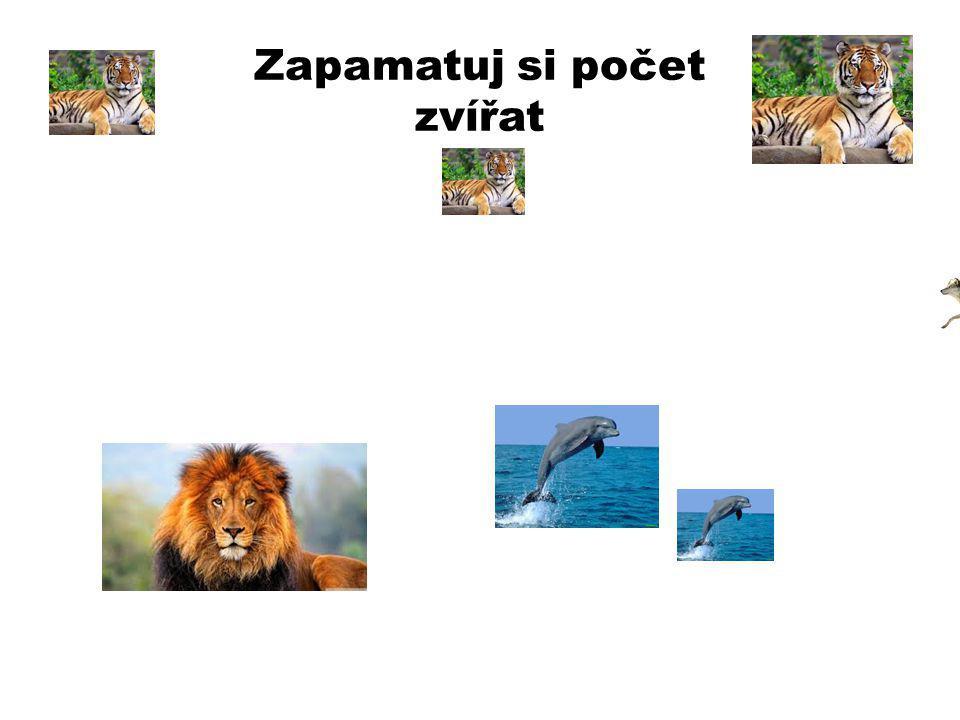 Zapamatuj si počet zvířat