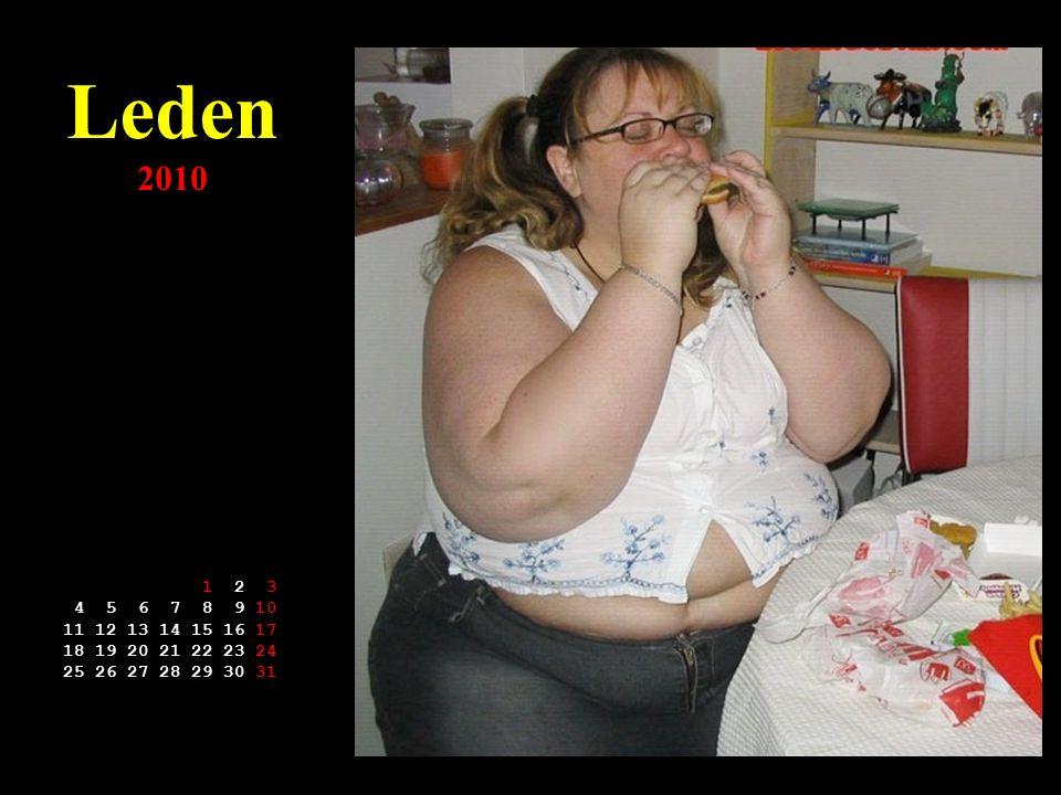 """Kalendář McDonald's 2010 J@ S heslem roku: Dohnat a předehnat Ameriku Kliknutí = další měsíc Jedině """"Mekáč""""- ať si můžeš polaskat ňadra po celém těle"""