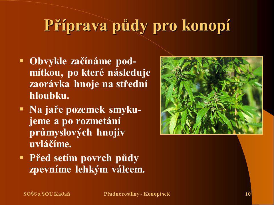 SOŠS a SOU KadaňPřadné rostliny - Konopí seté10 Příprava půdy pro konopí  Obvykle začínáme pod- mítkou, po které následuje zaorávka hnoje na střední hloubku.