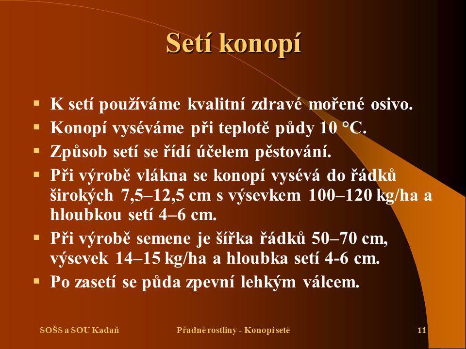 SOŠS a SOU KadaňPřadné rostliny - Konopí seté11 Setí konopí  K setí používáme kvalitní zdravé mořené osivo.