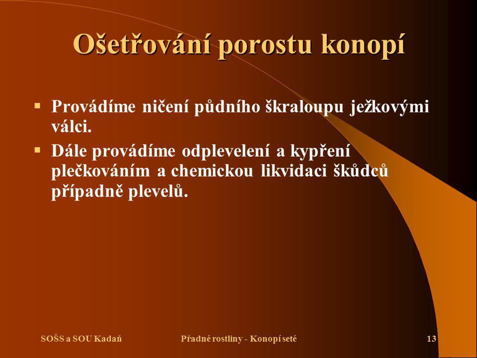 SOŠS a SOU KadaňPřadné rostliny - Konopí seté13 Ošetřování porostu konopí  Provádíme ničení půdního škraloupu ježkovými válci.