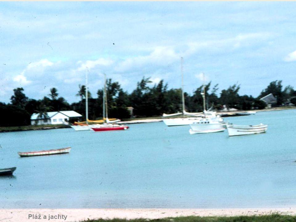 Bungalovy u pláže