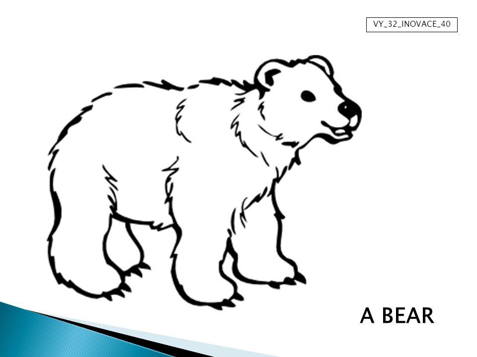 Název materiálu: Anotace:Prezentace je určena k osvojení nové slovní zásoby na téma divoká zvířata.
