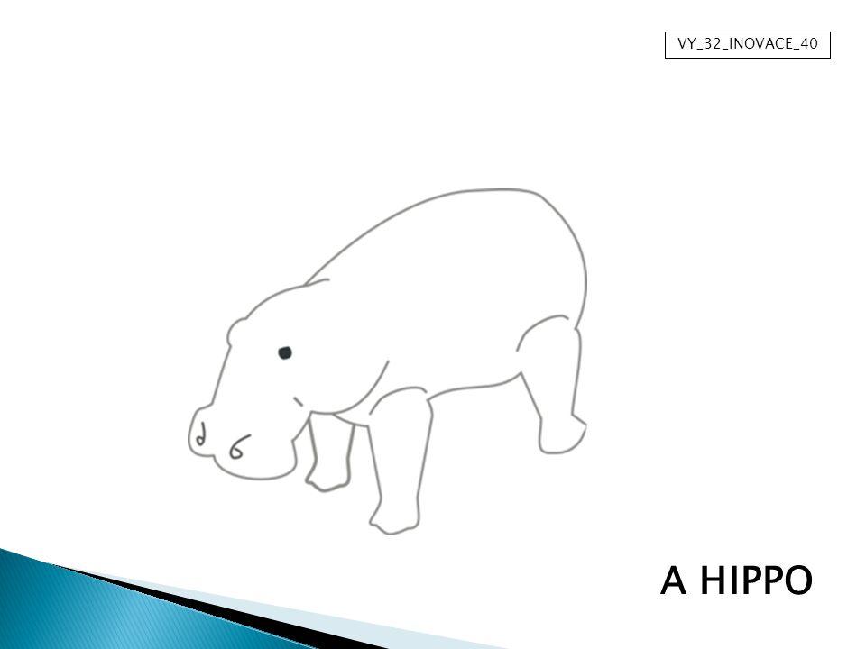 VY_32_INOVACE_40 A HIPPO