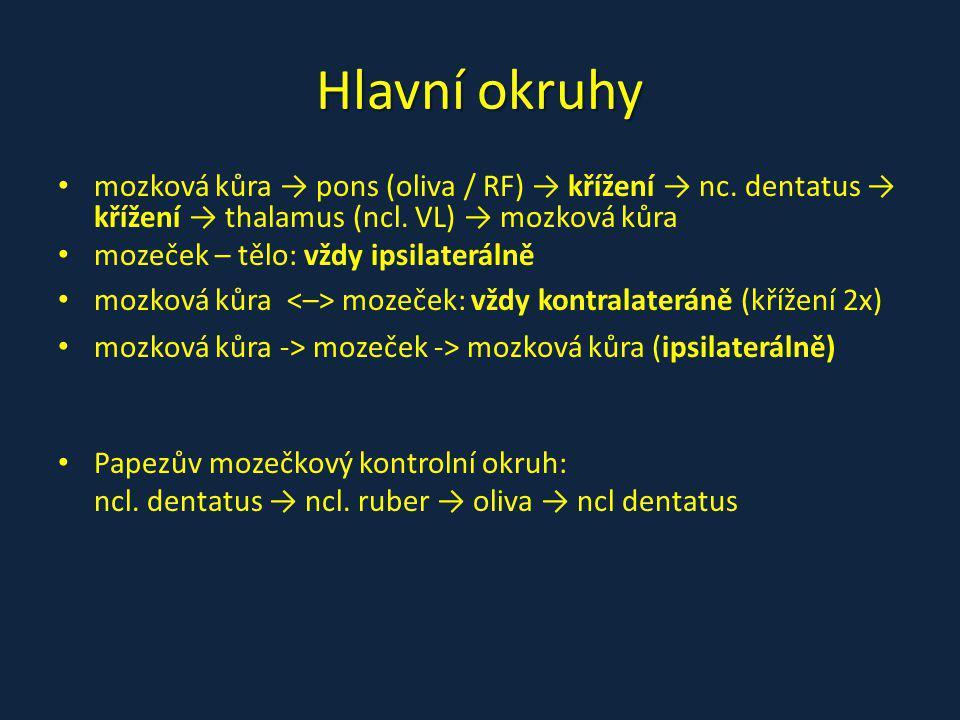 Hlavní okruhy mozková kůra → pons (oliva / RF) → křížení → nc. dentatus → křížení → thalamus (ncl. VL) → mozková kůra mozeček – tělo: vždy ipsilaterál