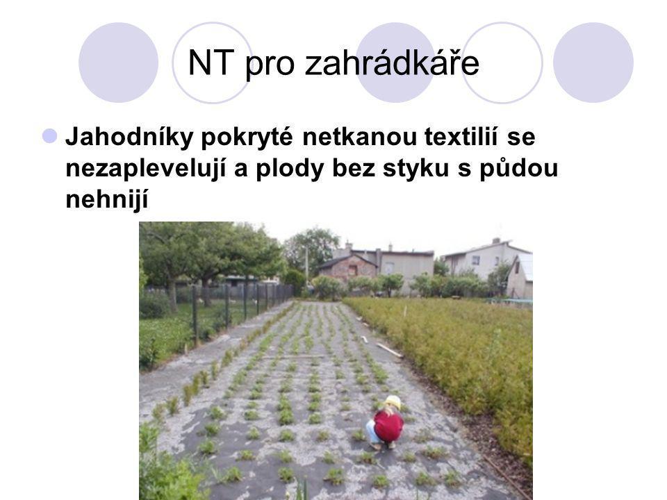 NT pro zahrádkáře Jahodníky pokryté netkanou textilií se nezaplevelují a plody bez styku s půdou nehnijí