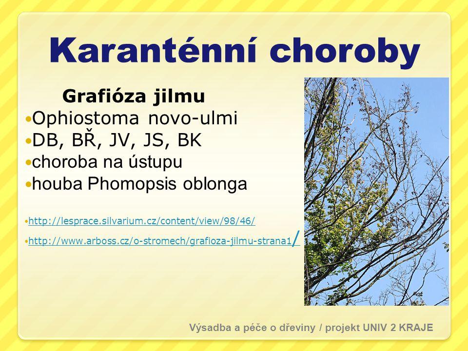 Karanténní choroby Grafióza jilmu Ophiostoma novo-ulmi DB, BŘ, JV, JS, BK choroba na ústupu houba Phomopsis oblonga http://lesprace.silvarium.cz/conte