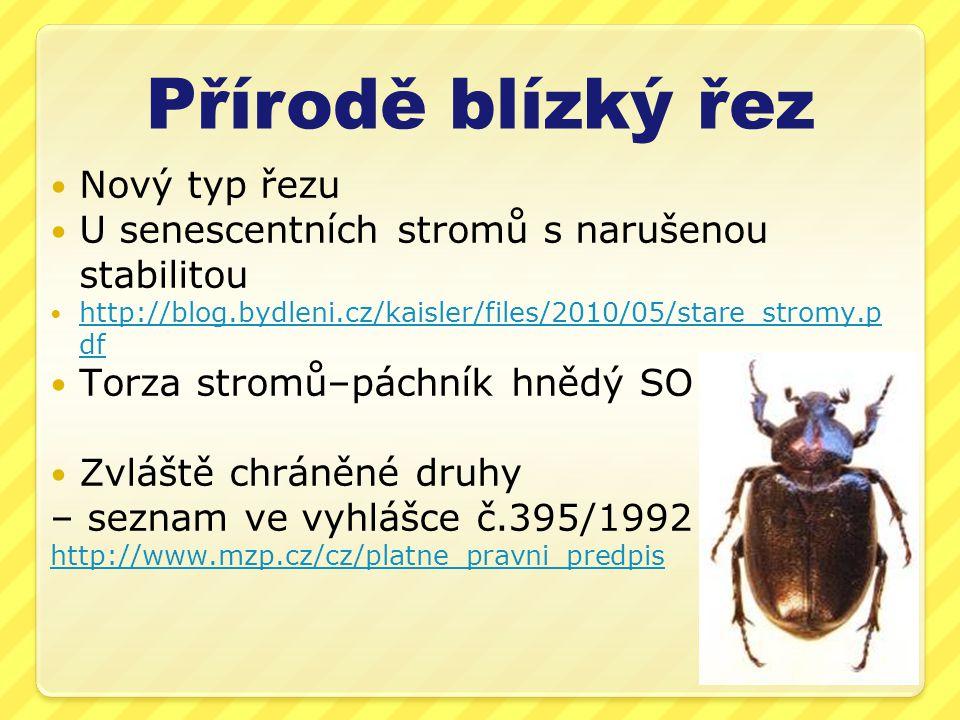 Přírodě blízký řez Nový typ řezu U senescentních stromů s narušenou stabilitou http://blog.bydleni.cz/kaisler/files/2010/05/stare_stromy.p df http://b