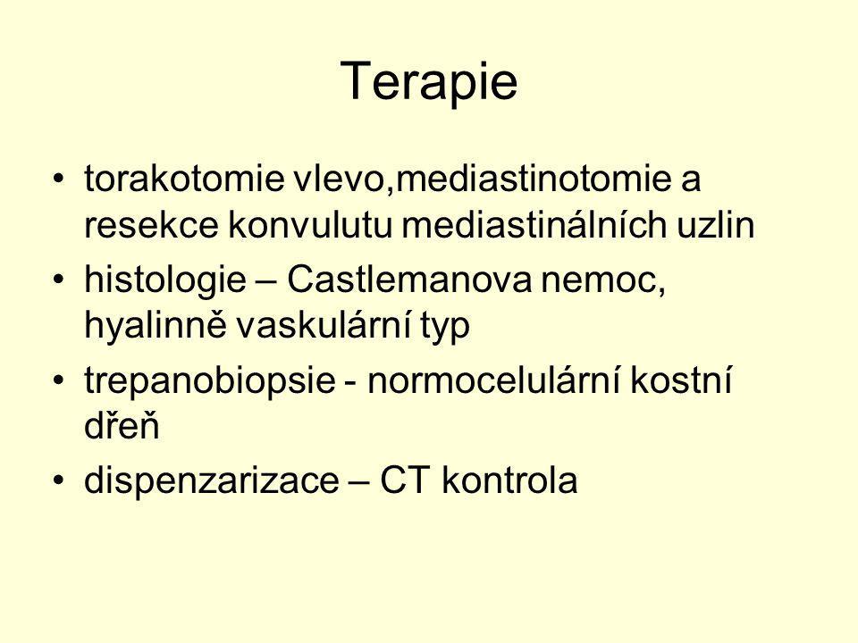 Terapie torakotomie vlevo,mediastinotomie a resekce konvulutu mediastinálních uzlin histologie – Castlemanova nemoc, hyalinně vaskulární typ trepanobi