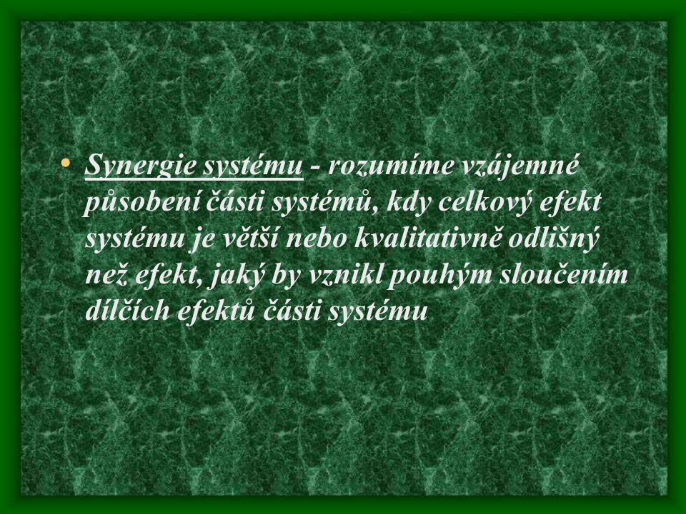 Synergie systému - rozumíme vzájemné působení části systémů, kdy celkový efekt systému je větší nebo kvalitativně odlišný než efekt, jaký by vznikl po