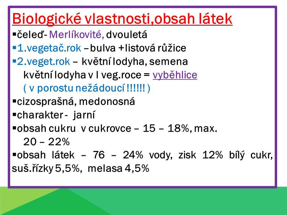Biologické vlastnosti,obsah látek  čeleď- Merlíkovité, dvouletá  1.vegetač.rok –bulva +listová růžice  2.veget.rok – květní lodyha, semena květní lodyha v l veg.roce = vyběhlice ( v porostu nežádoucí !!!!!.