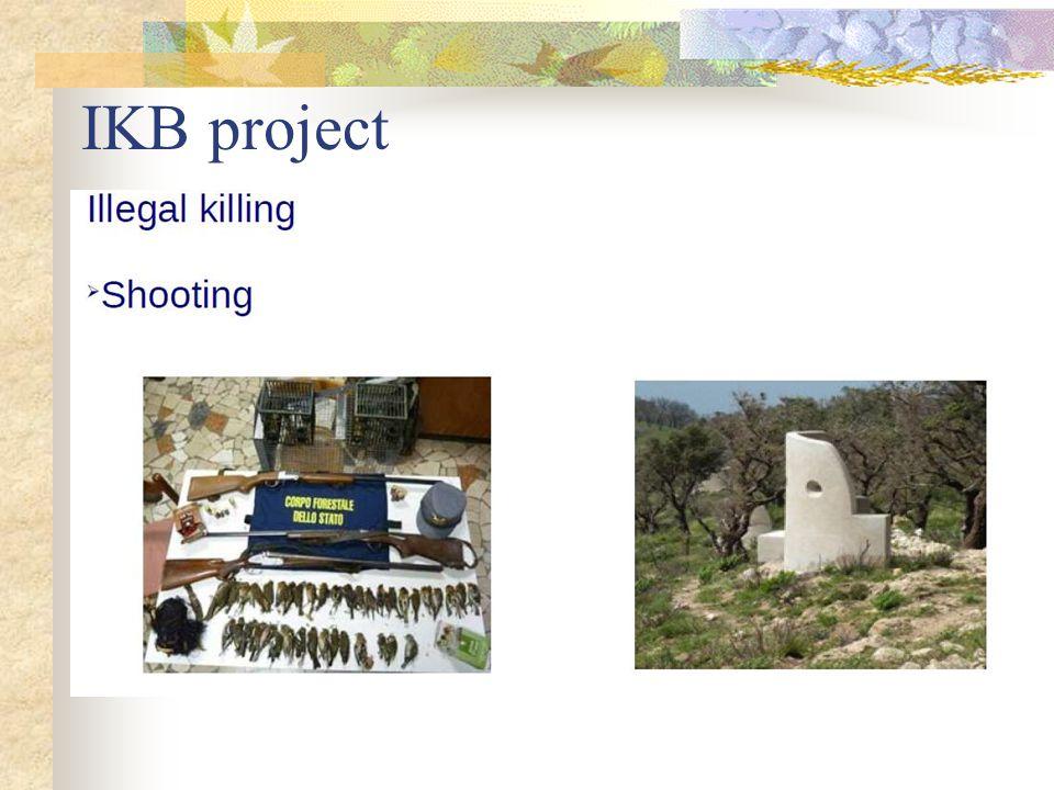 IKB project