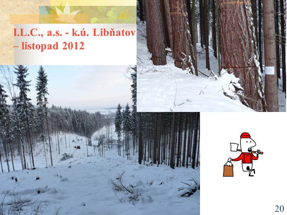 20 I.L.C., a.s. - k.ú. Libňatov – listopad 2012