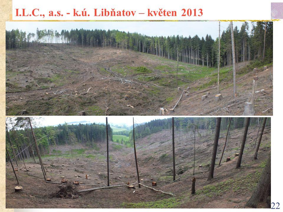 22 I.L.C., a.s. - k.ú. Libňatov – květen 2013