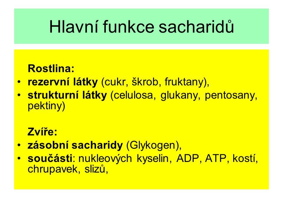 Hlavní skupiny sacharidů Monosacharidy: Pentosy (ribosa, arabinosa, xylosa), Hexosy (glukosa, galaktosa, fruktosa) Disacharidy: Sacharosa, laktosa, ma