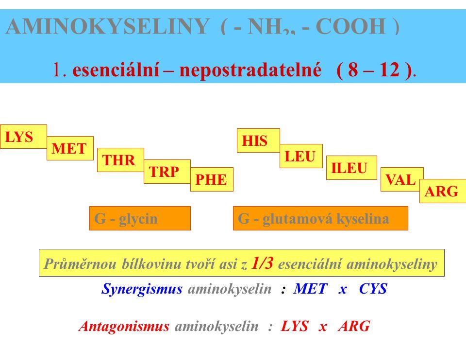 Nutriční cennost bílkoviny ( BHB ) závisí na bohatosti spektra a přístupnosti AMINOKYSELIN Zdroje aminokyselin v živočišném těle :  volné aminokyseli