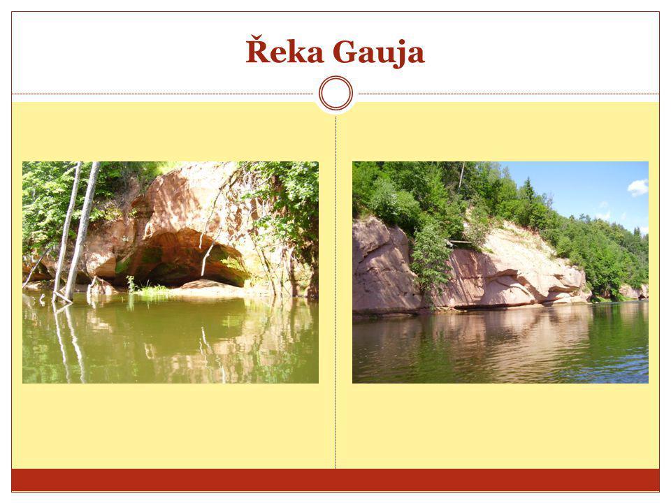 Řeka Gauja