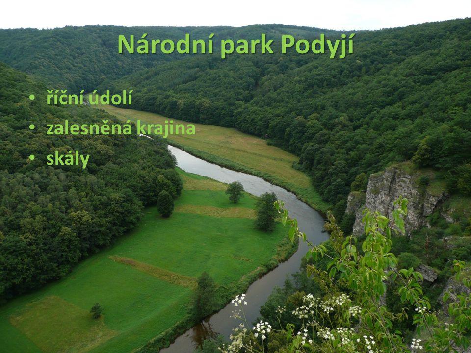 Národní park Podyjí říční údolí zalesněná krajina skály