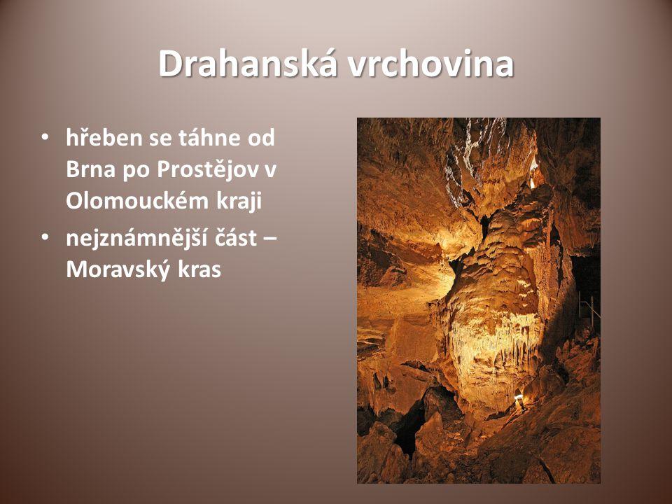 Hrady a zámky Bítov Lednice Vranov nad Dyjí Valtice, Lysice, Bučovice Špilberk Strážnice - skanzen