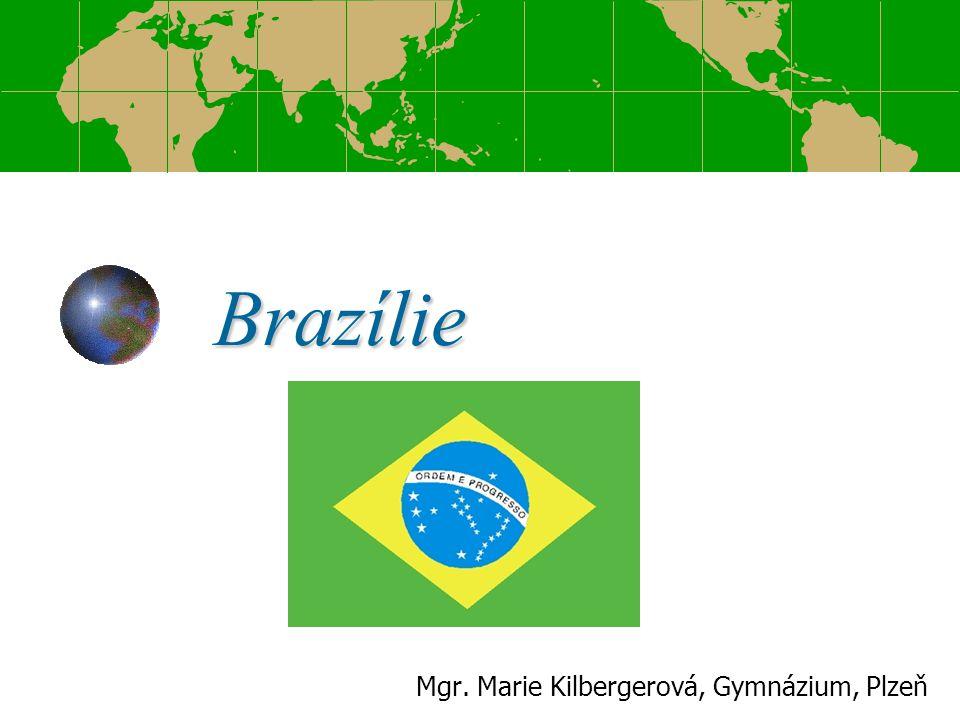 Osnova Obecné informace Brazilské bankovky Sousední státy Brazílie Povrch Pico da Neblina Podnebí a vegetace Klimadiagramy Tropický deštný les Patrovité uspořádání lesa Fauna a flóra Brazílie Vodstvo Objevení a osídlení Brazílie Potomci původního obyvatelstva Obyvatelstvo Zemědělství Nerostné suroviny Průmysl Cestovní ruch