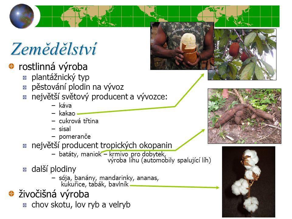 Zemědělství rostlinná výroba plantážnický typ pěstování plodin na vývoz největší světový producent a vývozce: –káva –kakao –cukrová třtina –sisal –pom