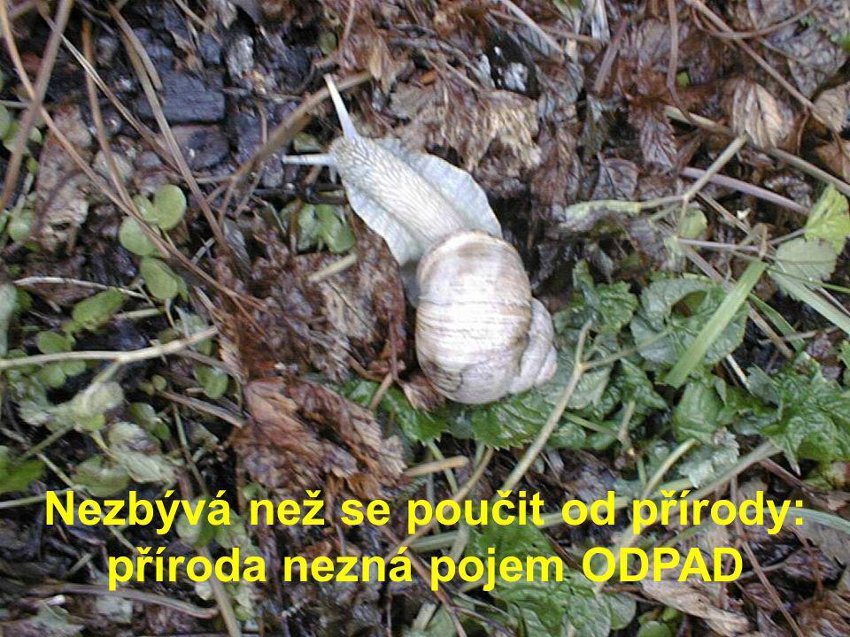Nezbývá než se poučit od přírody: příroda nezná pojem ODPAD