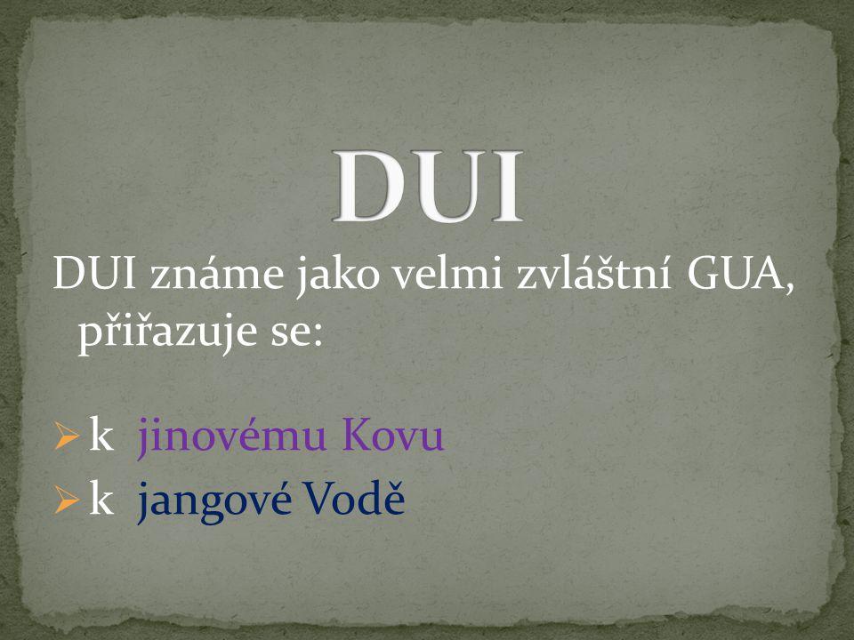 DUI známe jako velmi zvláštní GUA, přiřazuje se:  k jinovému Kovu  k jangové Vodě