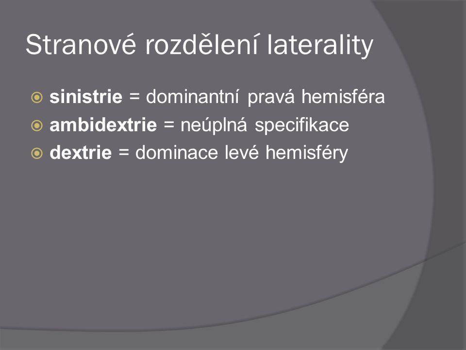 Stranové rozdělení laterality  sinistrie = dominantní pravá hemisféra  ambidextrie = neúplná specifikace  dextrie = dominace levé hemisféry