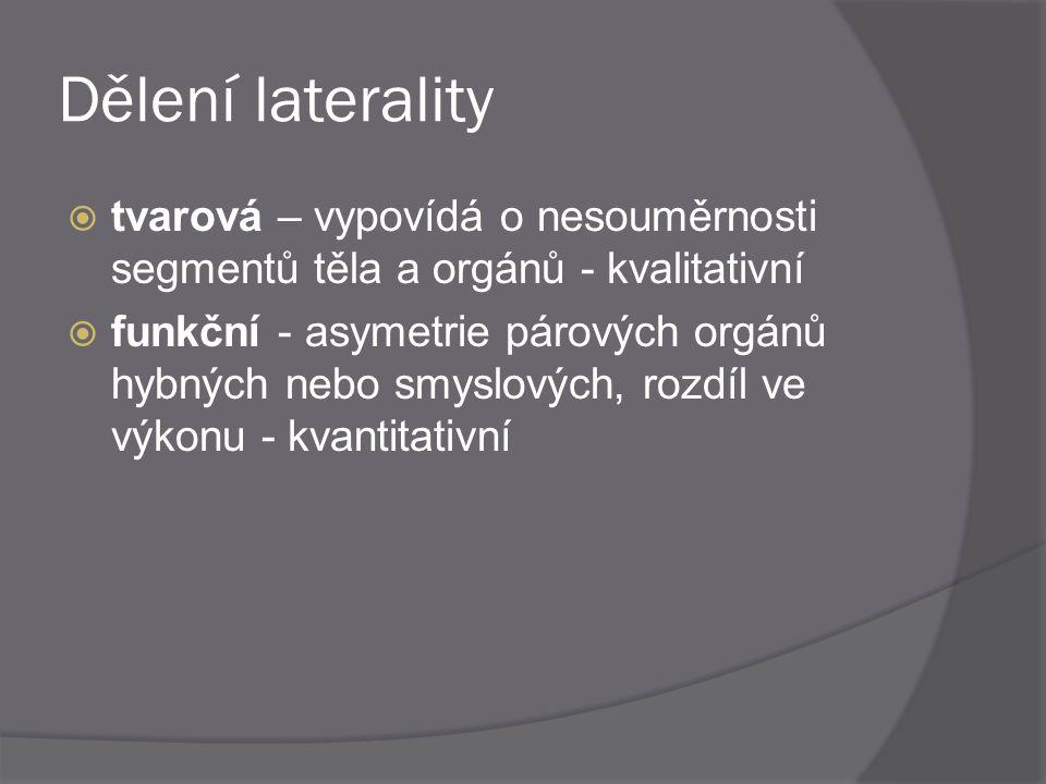 Dělení laterality  tvarová – vypovídá o nesouměrnosti segmentů těla a orgánů - kvalitativní  funkční - asymetrie párových orgánů hybných nebo smyslo