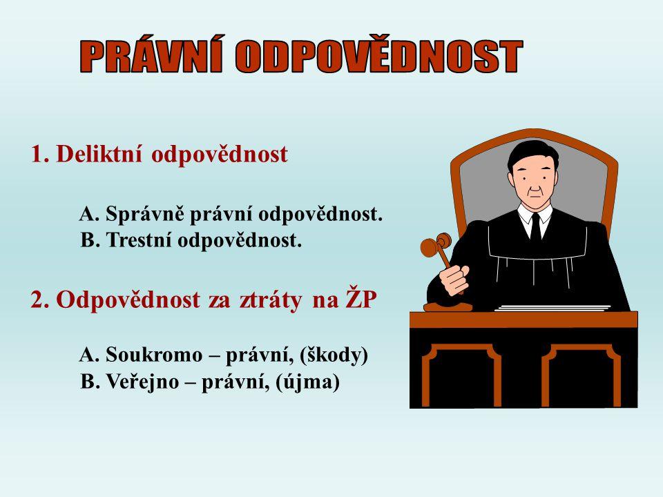 1. Deliktní odpovědnost A. Správně právní odpovědnost. B. Trestní odpovědnost. 2. Odpovědnost za ztráty na ŽP A. Soukromo – právní, (škody) B. Veřejno