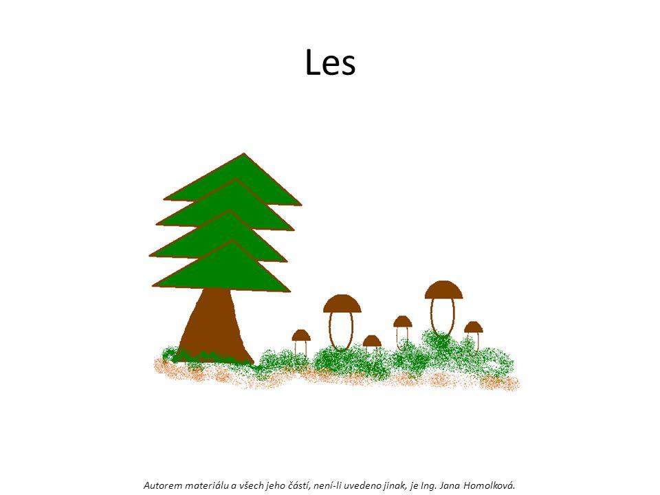 Les Autorem materiálu a všech jeho částí, není-li uvedeno jinak, je Ing. Jana Homolková.