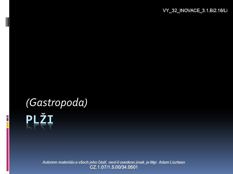 (Gastropoda) Autorem materiálu a všech jeho částí, není-li uvedeno jinak, je Mgr. Adam Lisztwan CZ.1.07/1.5.00/34.0501 VY_32_INOVACE_3.1.Bi2.16/Li