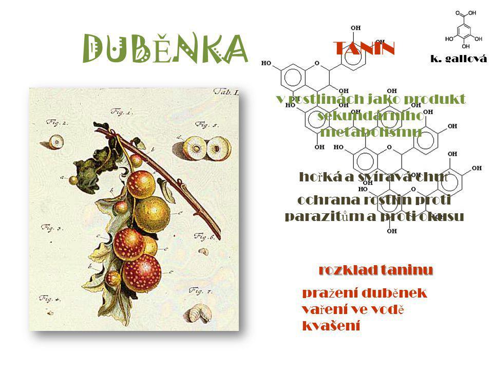 ( Ž ELEZNATO)DUB Ě NKOVÝ INKOUST organokovová slou č enina rozptýlená ve vod ě - suspenze inkoust 12.