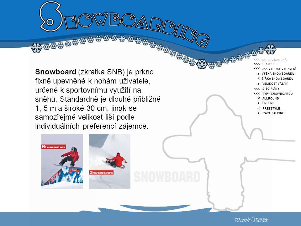 < CO TO ZNAMENÁ HISTORIE JAK VYBRAT VYBAVENÍ VÝŠKA SNOWBOARDU ŠÍŘKA SNOWBOARDU VELIKOST VÁZÁNÍ DISCIPLÍNY TYPY SNOWBOARDU ALLROUND FREERIDE FREESTYLE RACE / ALPINE <<< < < < < < < Snowboard (zkratka SNB) je prkno fixně upevněné k nohám uživatele, určené k sportovnímu využití na sněhu.