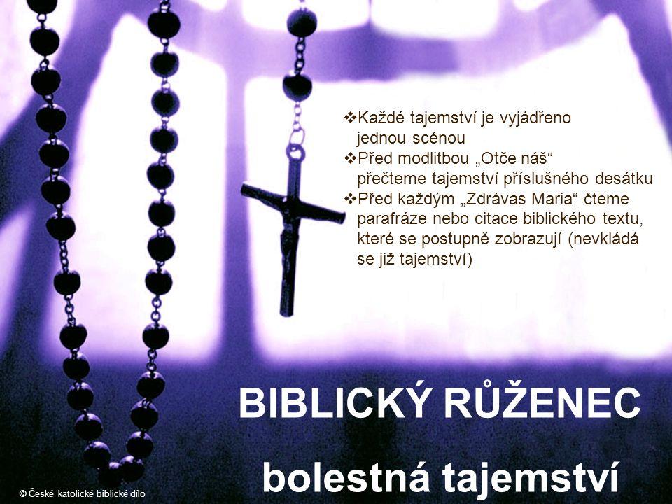 """BIBLICKÝ RŮŽENEC bolestná tajemství © České katolické biblické dílo  Každé tajemství je vyjádřeno jednou scénou  Před modlitbou """"Otče náš"""" přečteme"""