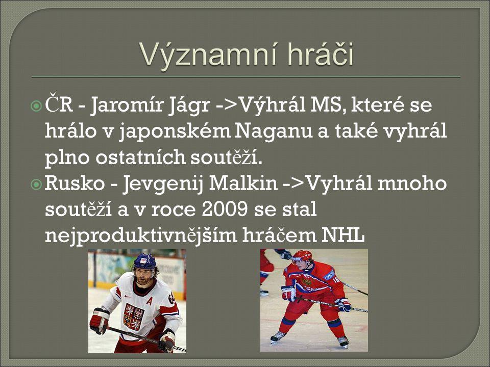  Č R - Jaromír Jágr ->Výhrál MS, které se hrálo v japonském Naganu a také vyhrál plno ostatních sout ěž í.  Rusko - Jevgenij Malkin ->Vyhrál mnoho s