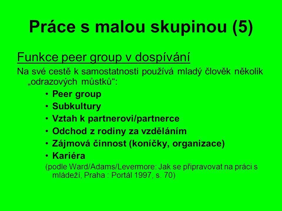 """Práce s malou skupinou (5) Funkce peer group v dospívání Na své cestě k samostatnosti používá mladý člověk několik """"odrazových můstků : Peer group Subkultury Vztah k partnerovi/partnerce Odchod z rodiny za vzděláním Zájmová činnost (koníčky, organizace) Kariéra (podle Ward/Adams/Levermore: Jak se připravovat na práci s mládeží, Praha : Portál 1997, s."""