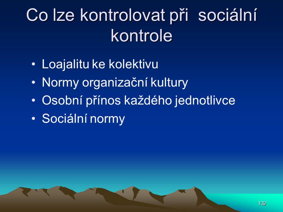 Co lze kontrolovat při sociální kontrole Loajalitu ke kolektivu Normy organizační kultury Osobní přínos každého jednotlivce Sociální normy 132